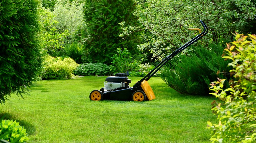 Lawn Care: The Ugly Truth and The Simple Solution